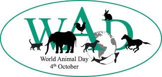 gTChq October 4th World Animal Day 2011