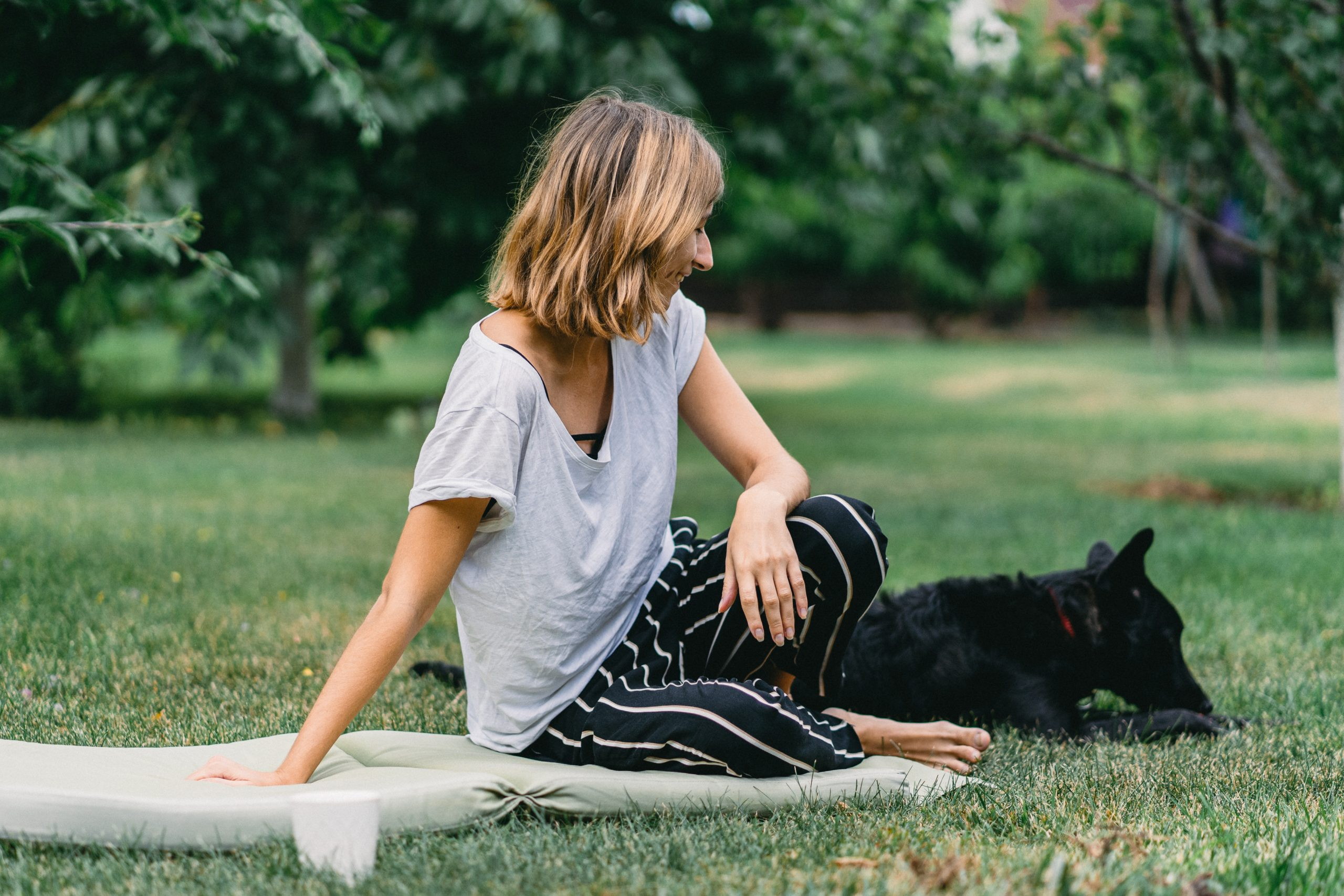 dog friend animal stockpack pixabay scaled Alternative Health Treatments for Dogs